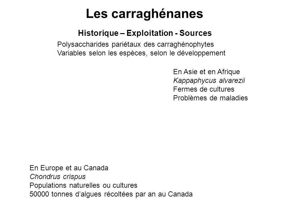 Les carraghénanes Historique – Exploitation - Sources