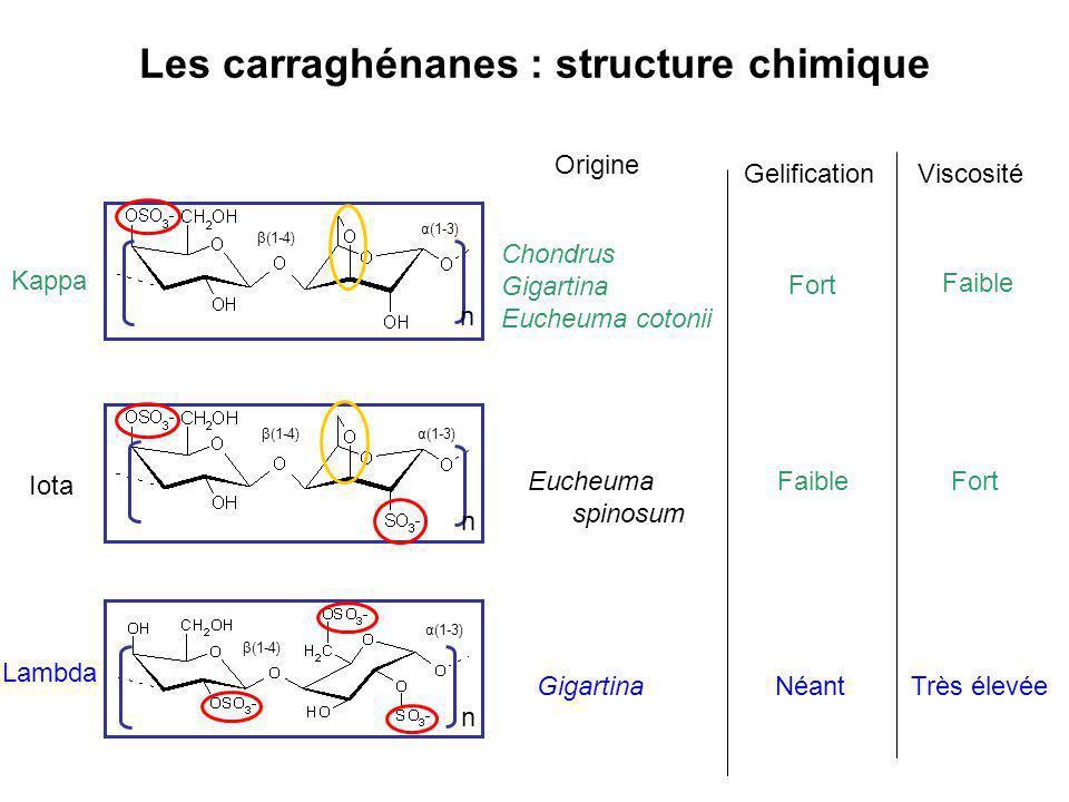 Les carraghénanes : structure chimique