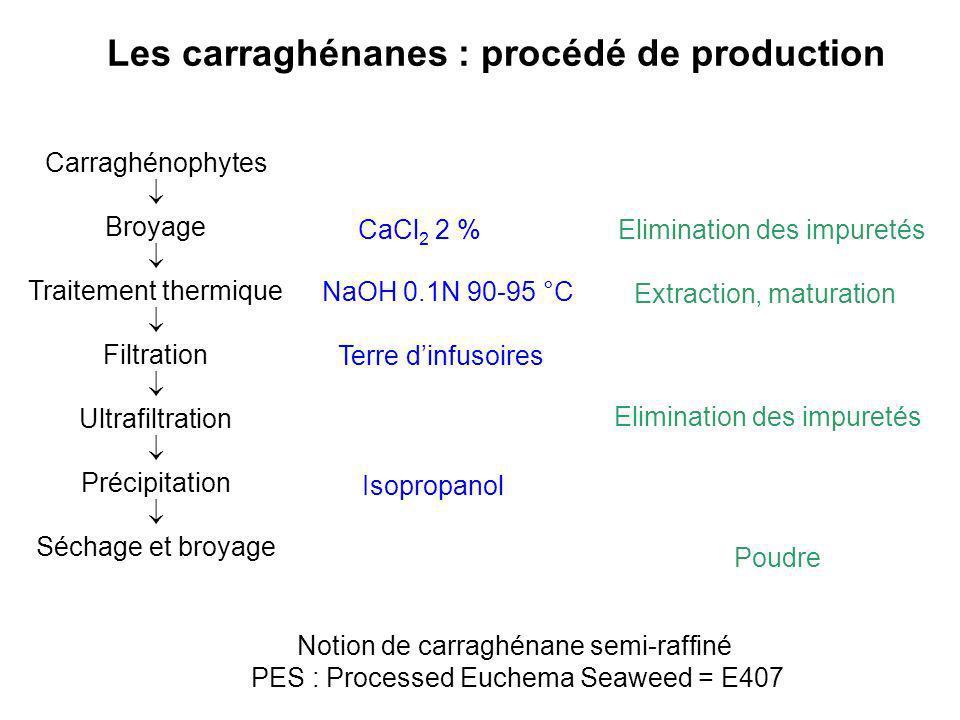 Les carraghénanes : procédé de production