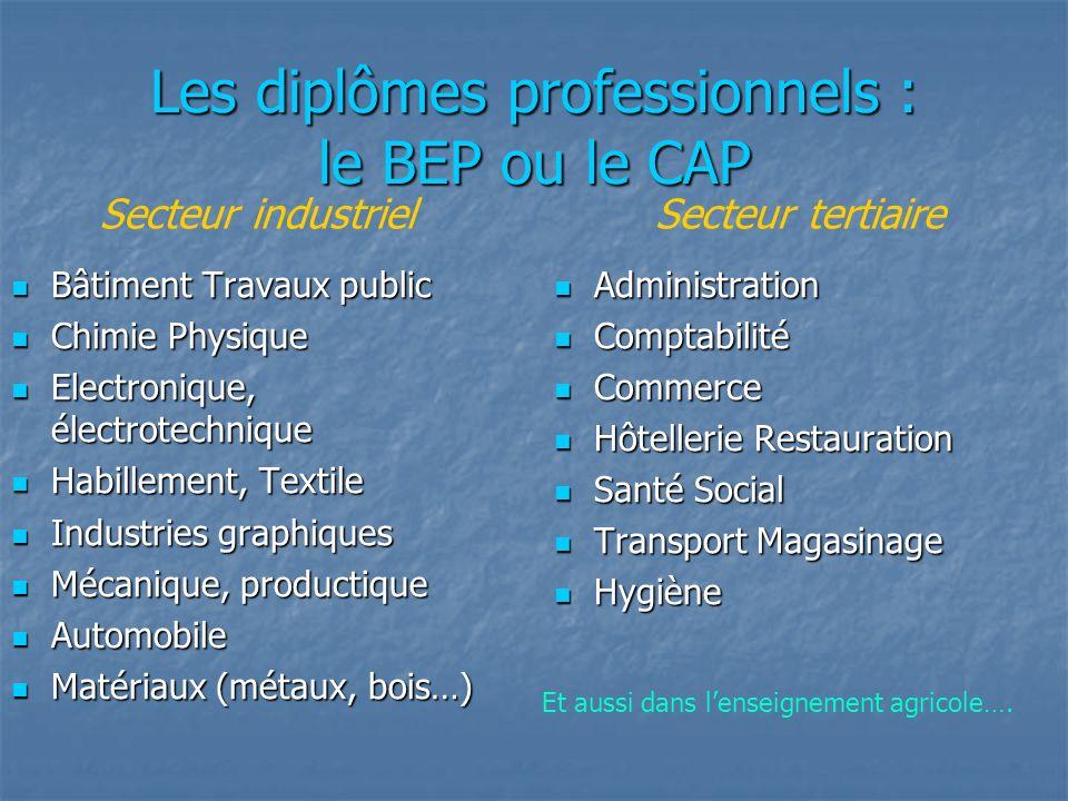 Les diplômes professionnels : le BEP ou le CAP