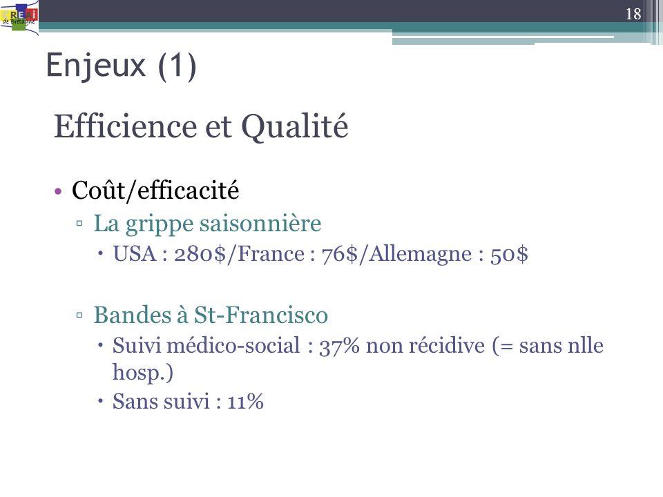 Enjeux (1) Efficience et Qualité Coût/efficacité La grippe saisonnière