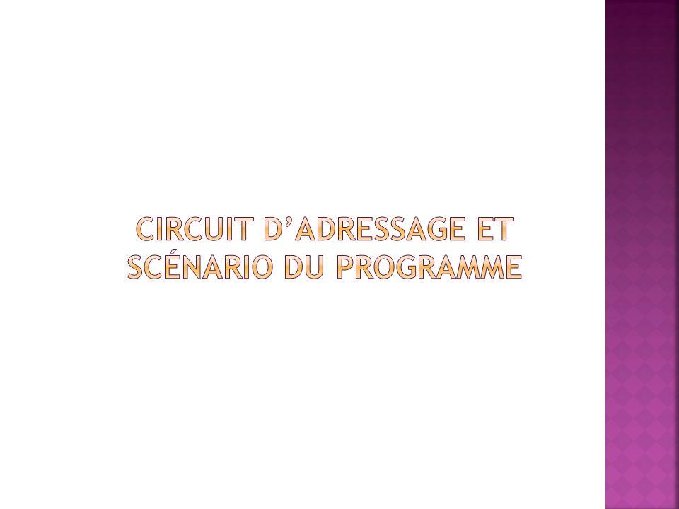 Circuit d'adressage et scénario du programme