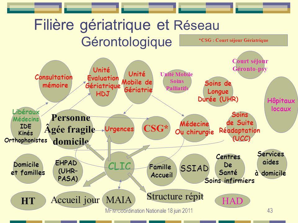 Filière gériatrique et Réseau Gérontologique