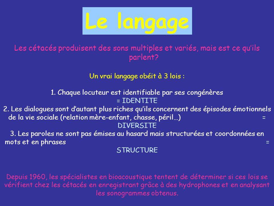 Le langage Les cétacés produisent des sons multiples et variés, mais est ce qu'ils parlent Un vrai langage obéit à 3 lois :