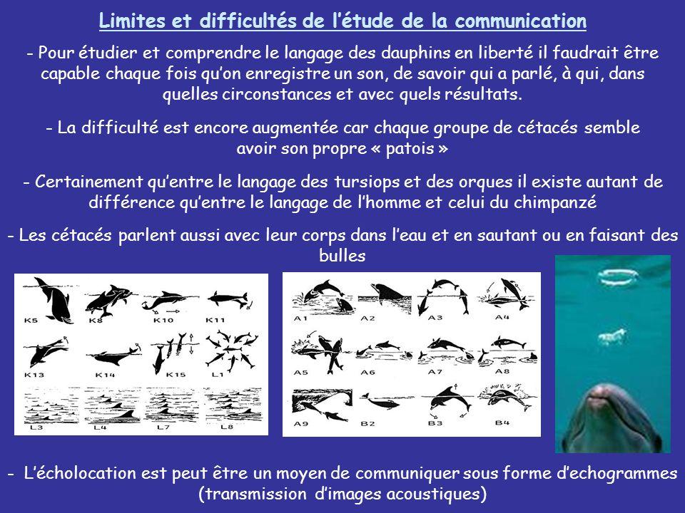 Limites et difficultés de l'étude de la communication