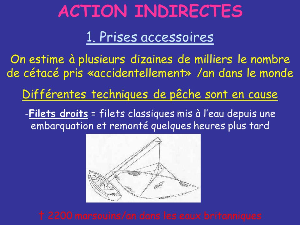ACTION INDIRECTES 1. Prises accessoires