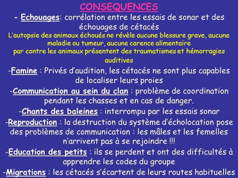 CONSEQUENCES - Echouages: corrélation entre les essais de sonar et des échouages de cétacés.