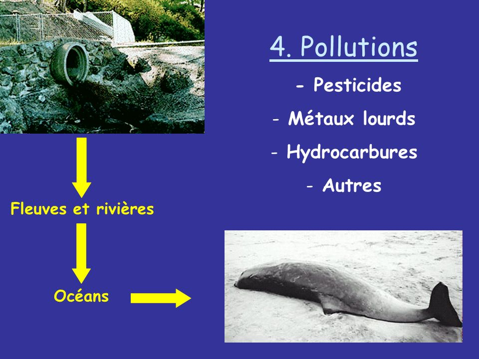 4. Pollutions - Pesticides Métaux lourds Hydrocarbures Autres