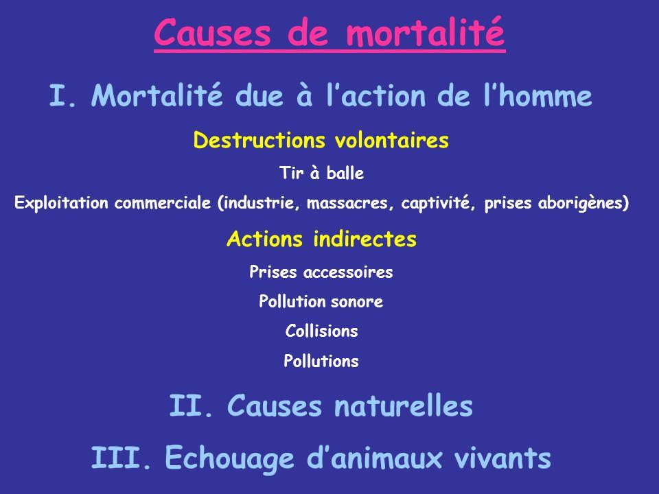 Causes de mortalité I. Mortalité due à l'action de l'homme