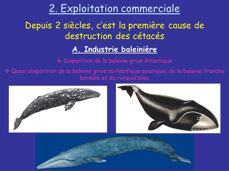 A. Industrie baleinière