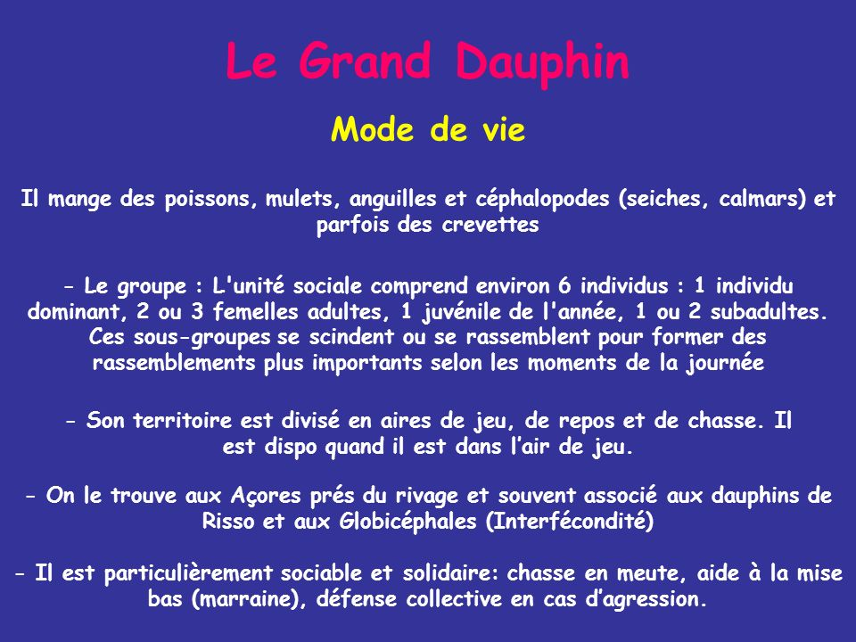 Le Grand Dauphin Mode de vie