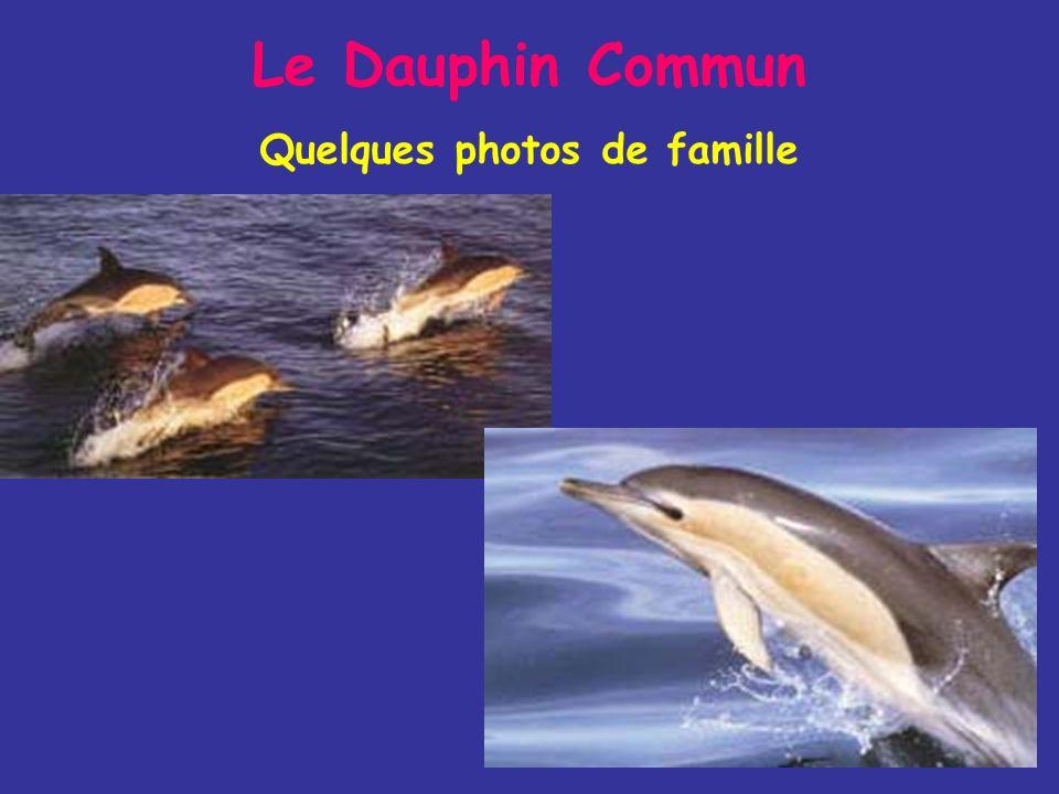 Quelques photos de famille