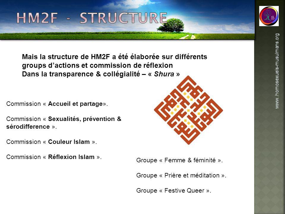 HM2F - structure Mais la structure de HM2F a été élaborée sur différents groups d'actions et commission de réflexion.
