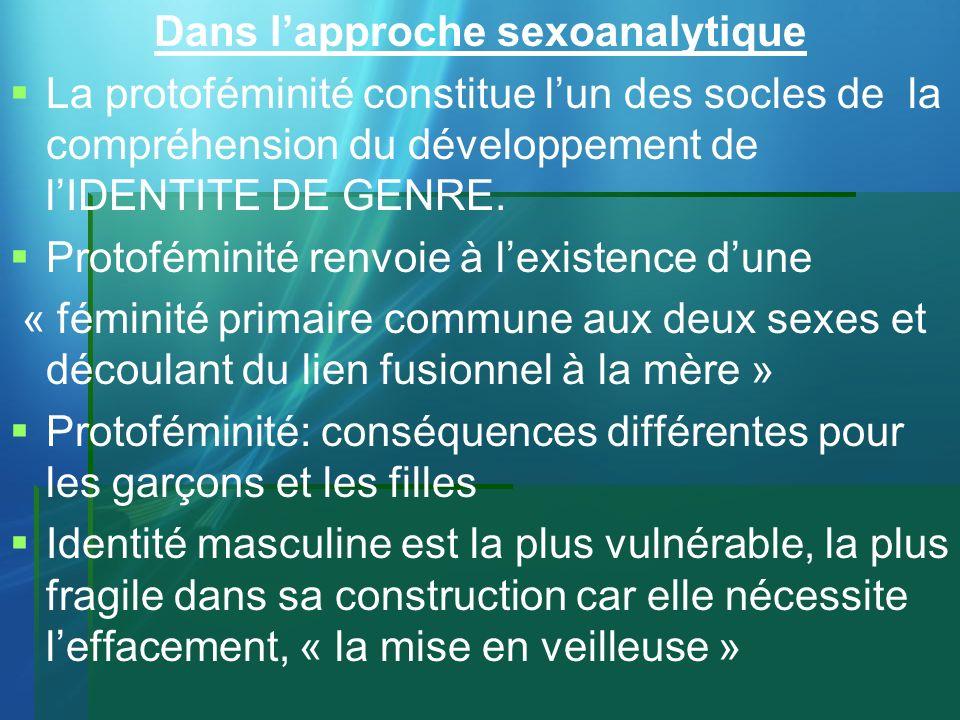 Dans l'approche sexoanalytique