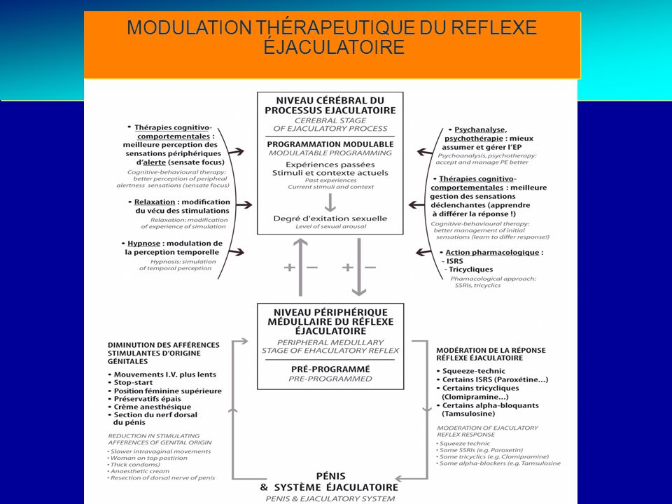 Treatment strategies MODULATION THÉRAPEUTIQUE DU REFLEXE ÉJACULATOIRE