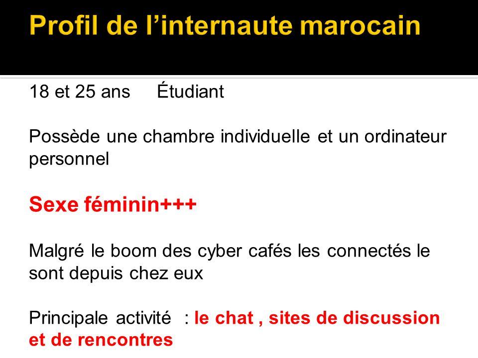 Profil de l'internaute marocain
