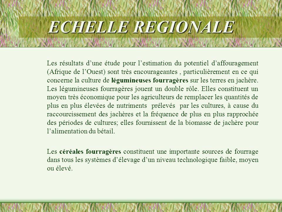 ECHELLE REGIONALE