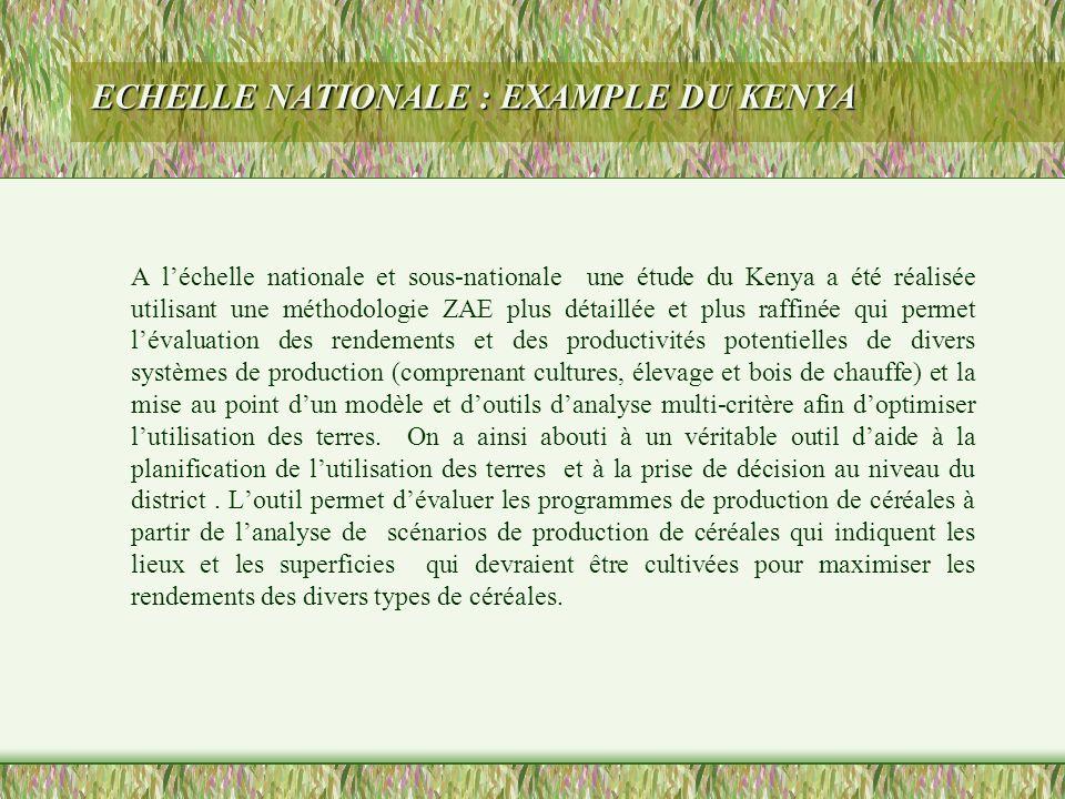 ECHELLE NATIONALE : EXAMPLE DU KENYA