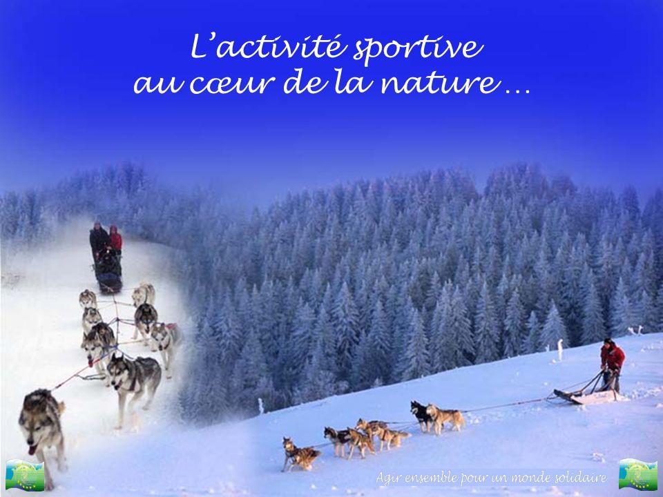 L'activité sportive au cœur de la nature …
