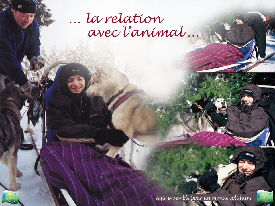 … la relation avec l'animal …