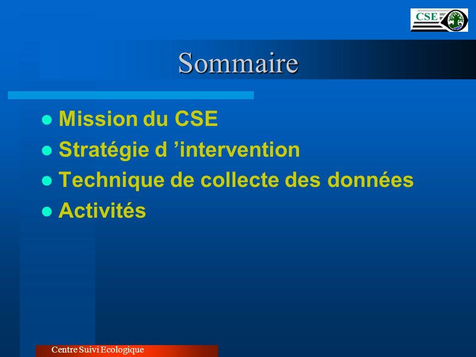 Sommaire Mission du CSE Stratégie d 'intervention