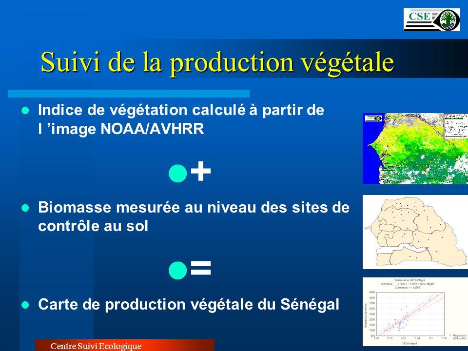 Suivi de la production végétale