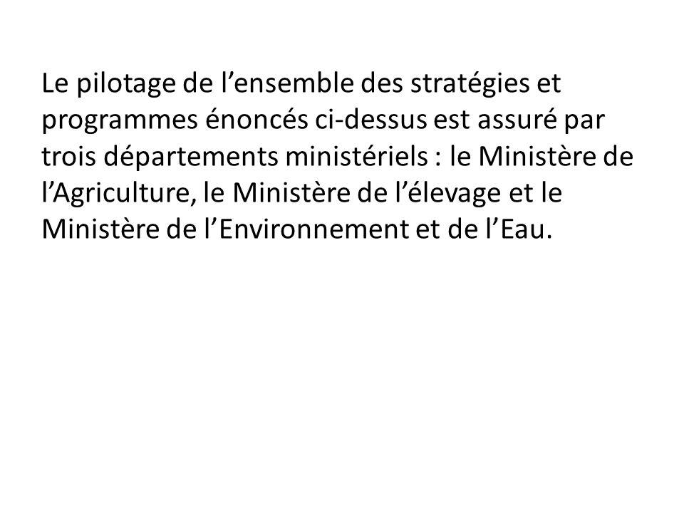 Le pilotage de l'ensemble des stratégies et programmes énoncés ci-dessus est assuré par trois départements ministériels : le Ministère de l'Agriculture, le Ministère de l'élevage et le Ministère de l'Environnement et de l'Eau.