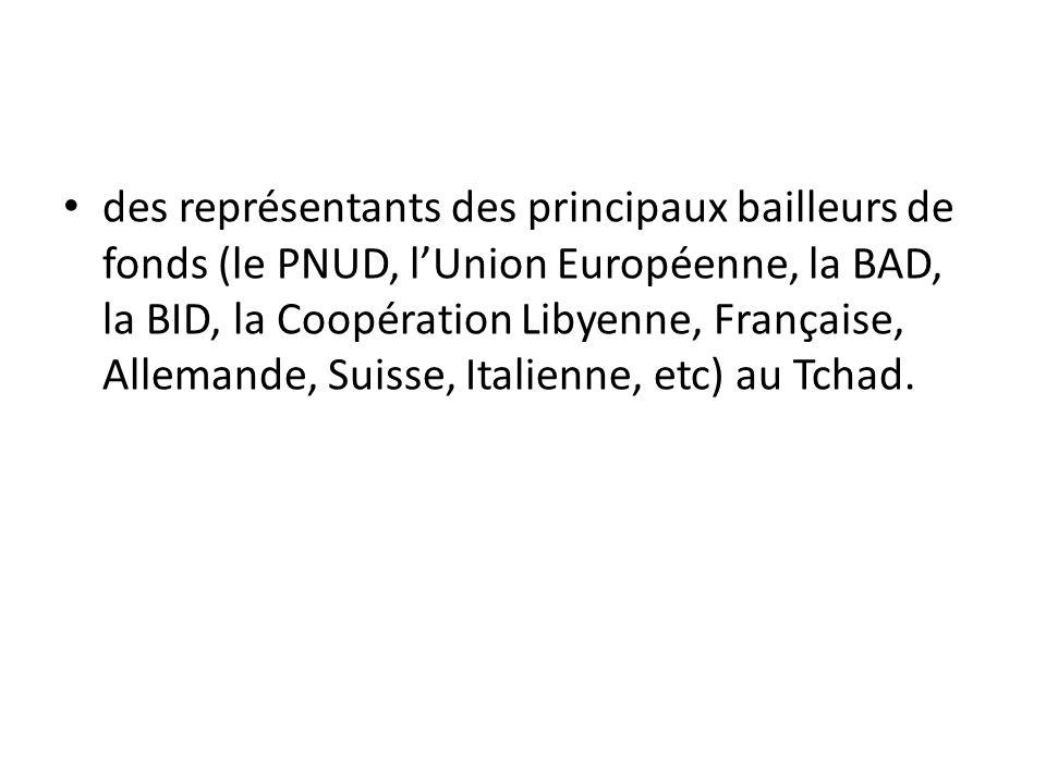 des représentants des principaux bailleurs de fonds (le PNUD, l'Union Européenne, la BAD, la BID, la Coopération Libyenne, Française, Allemande, Suisse, Italienne, etc) au Tchad.