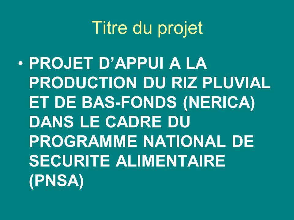 Titre du projet