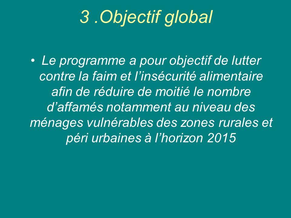 3 .Objectif global