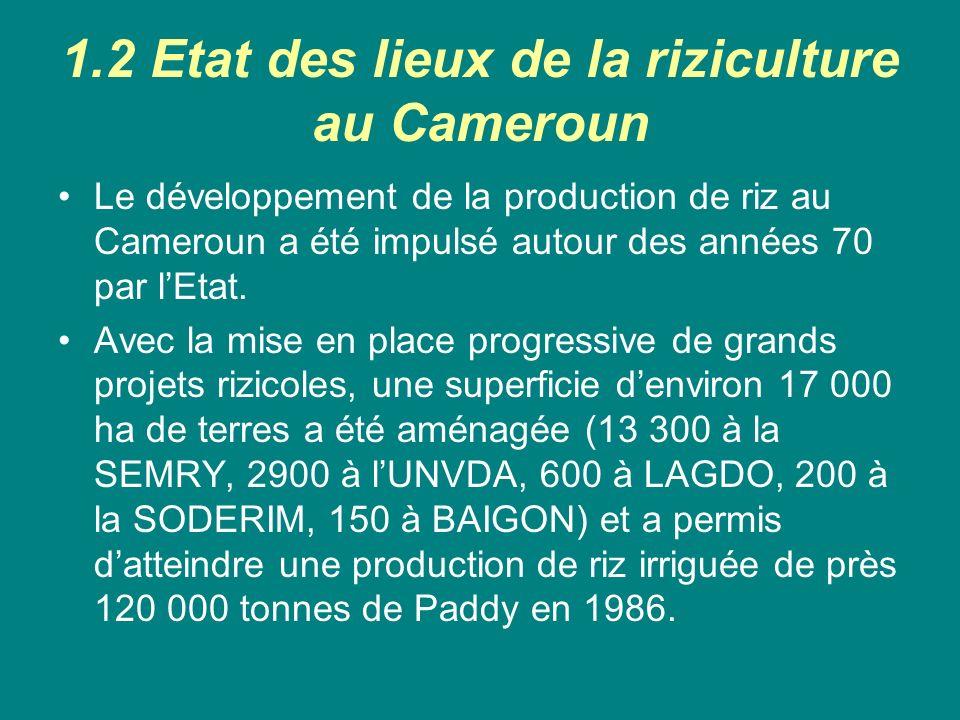 1.2 Etat des lieux de la riziculture au Cameroun
