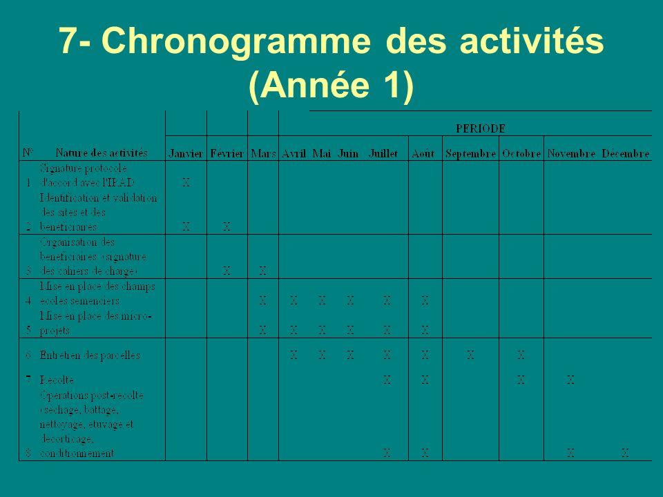 7- Chronogramme des activités (Année 1)