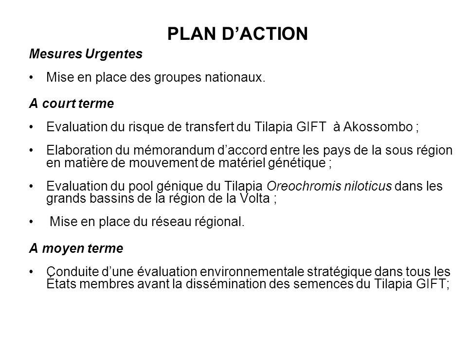 PLAN D'ACTION Mesures Urgentes Mise en place des groupes nationaux.