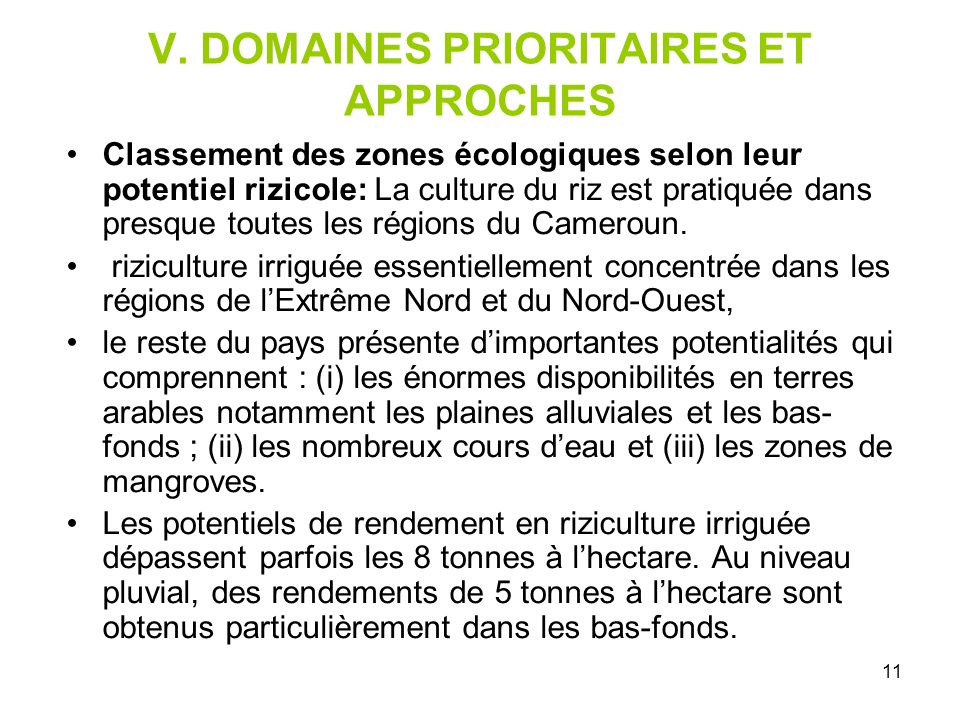 V. DOMAINES PRIORITAIRES ET APPROCHES