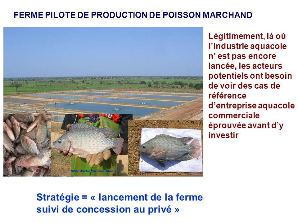 Stratégie = « lancement de la ferme suivi de concession au privé »