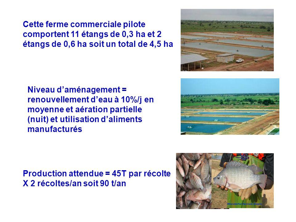 Cette ferme commerciale pilote comportent 11 étangs de 0,3 ha et 2 étangs de 0,6 ha soit un total de 4,5 ha