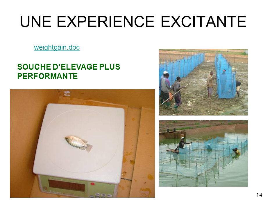 UNE EXPERIENCE EXCITANTE