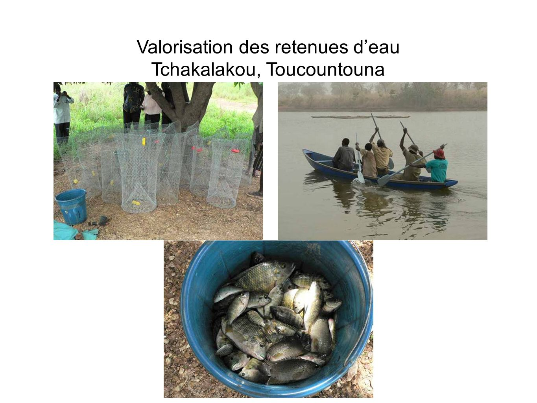 Valorisation des retenues d'eau Tchakalakou, Toucountouna
