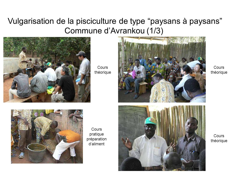 Vulgarisation de la pisciculture de type paysans à paysans