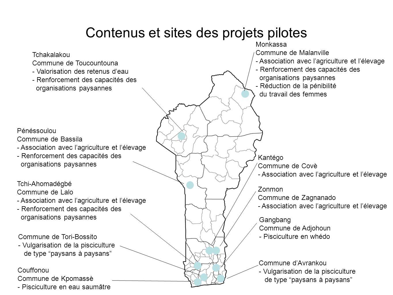 Contenus et sites des projets pilotes