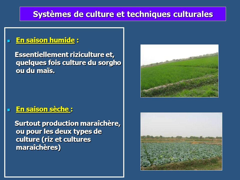 Systèmes de culture et techniques culturales
