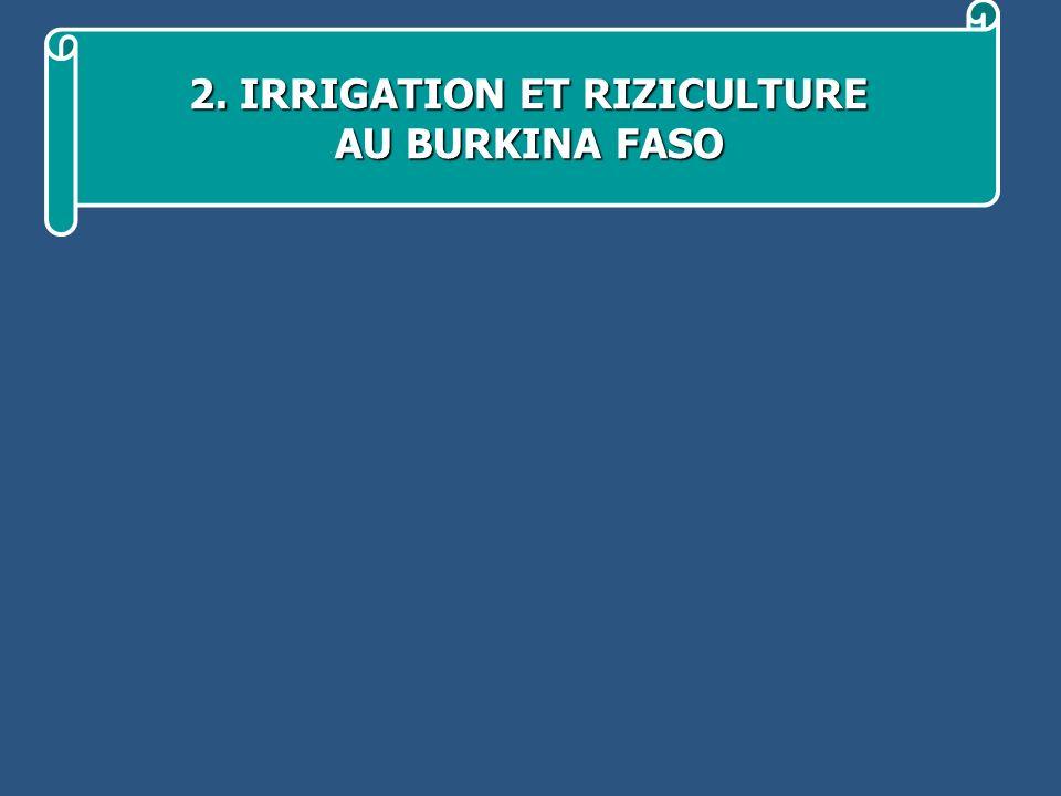 2. IRRIGATION ET RIZICULTURE