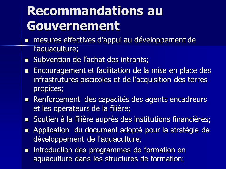 Recommandations au Gouvernement