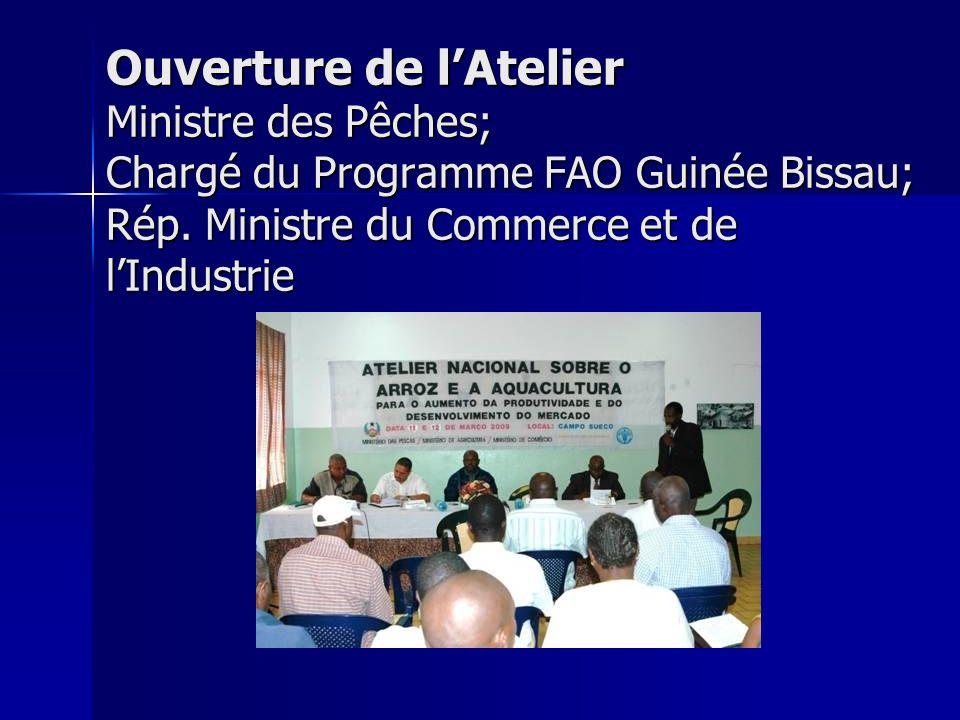 Ouverture de l'Atelier Ministre des Pêches; Chargé du Programme FAO Guinée Bissau; Rép. Ministre du Commerce et de l'Industrie