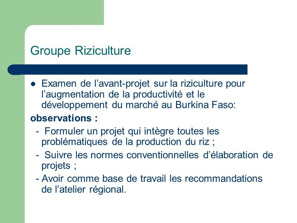 Groupe Riziculture Examen de l'avant-projet sur la riziculture pour l'augmentation de la productivité et le développement du marché au Burkina Faso: