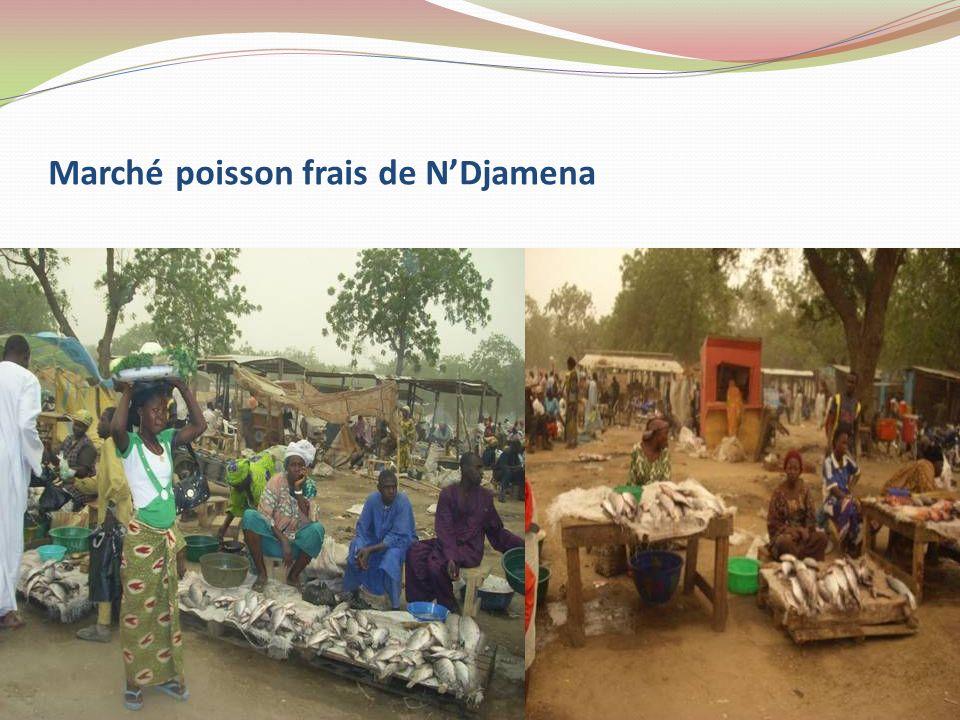 Marché poisson frais de N'Djamena