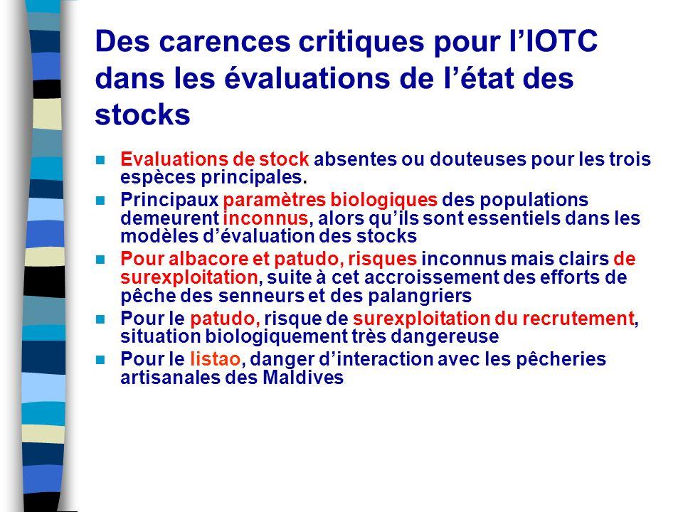 Des carences critiques pour l'IOTC dans les évaluations de l'état des stocks