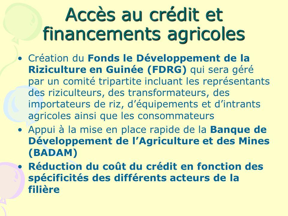 Accès au crédit et financements agricoles