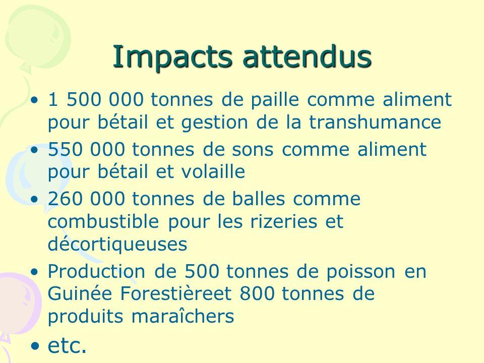 Impacts attendus 1 500 000 tonnes de paille comme aliment pour bétail et gestion de la transhumance.