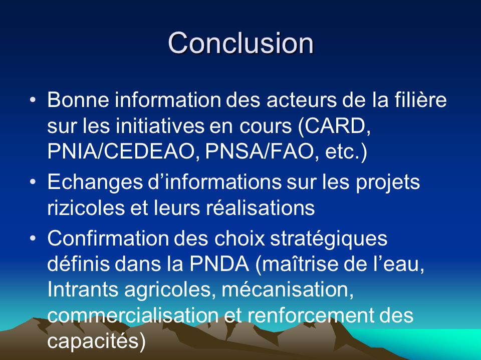 Conclusion Bonne information des acteurs de la filière sur les initiatives en cours (CARD, PNIA/CEDEAO, PNSA/FAO, etc.)